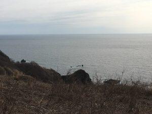 山の中腹からの海
